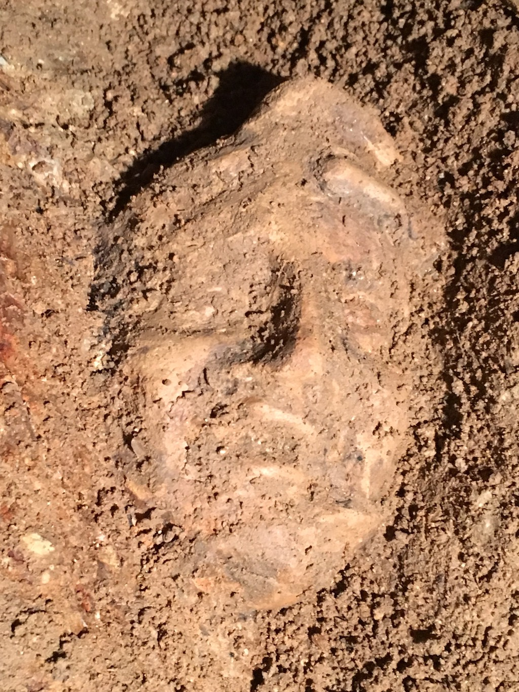 Etruscan Terracotta Mask Discovered in Tuscania (VT)